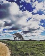 petaluma_hike_11