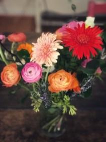 flores-amanda2