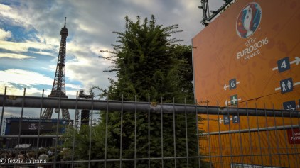 This tree was fenced in for its own protection.