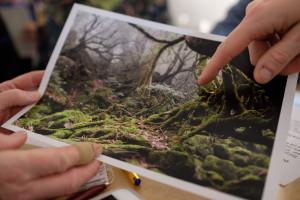 Marie Barges bild från japansk urskog kommenterades av flera grupper. (Foto: Rikard)