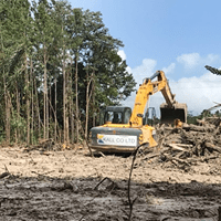 Bulldozers wreak havoc. Is this the last of the world famous Aripo Savannas?