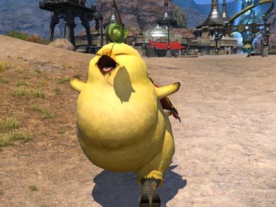 Fat Chocobo Final Fantasy XIV A Realm Reborn Wiki FFXIV FF14 ARR Community Wiki And Guide
