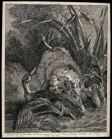 Jean-Baptiste Oudry : un chien essayant de tuer un canard