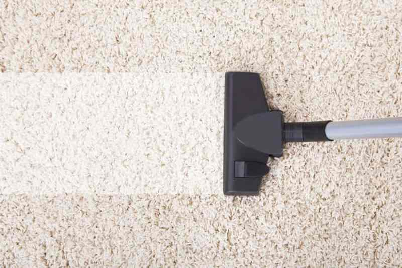 Thanksgiving Professional Carpet Cleaning - FGK Services, Inc.
