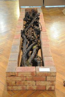 """Rekonstruktion einer Feuerstelle, wie sie in deutschen Nachtscheinanlagen üblich waren. Ausstellung zur Scheinanlage """"Brasilien"""" in Lauffen, 2011."""