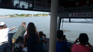 Florida Water Tours St Augustine Scenic Boat Tours