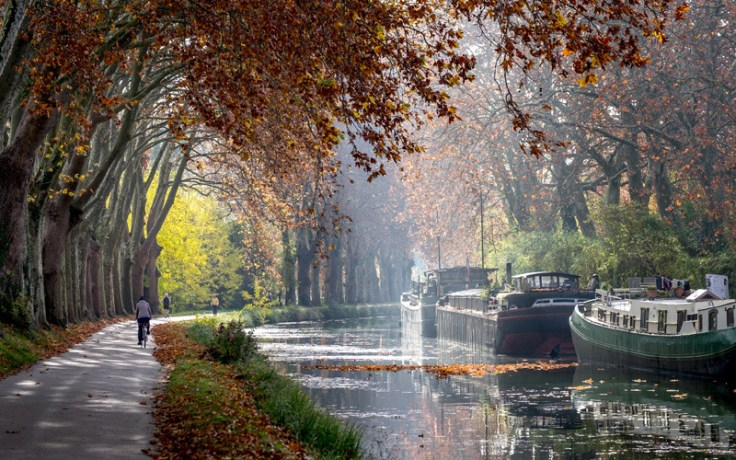 Canal Du Midi in Autumn