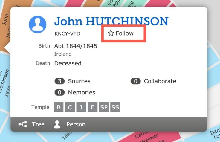 follow person card