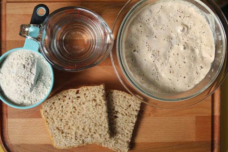 sourdough starter kit
