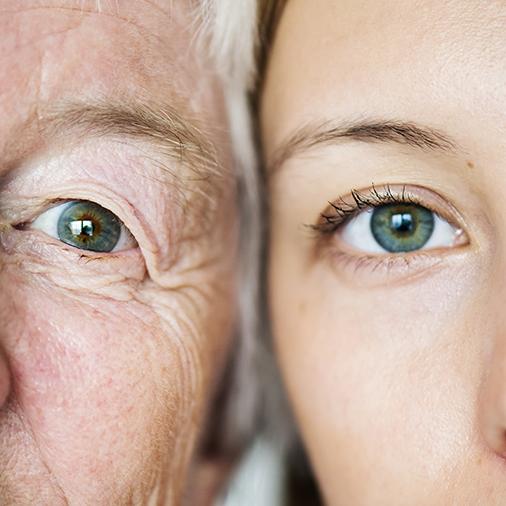 Family generation green eyes genetics concept.