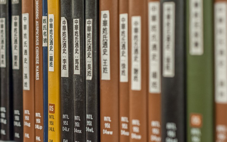 Books in multiple languages at a library.