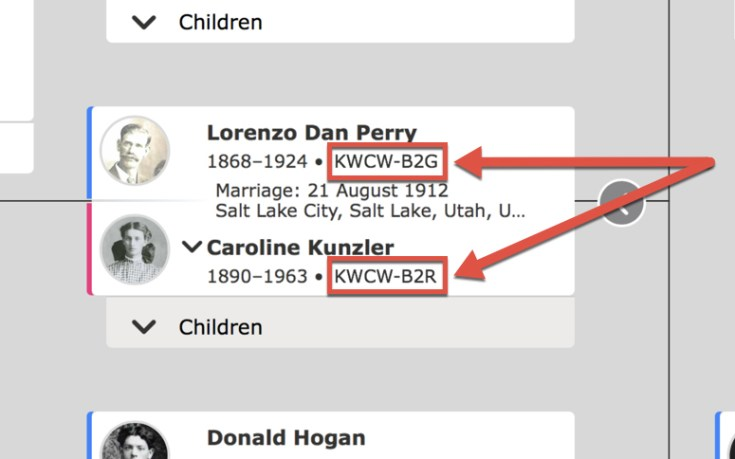 Person IDs in the Family Tree