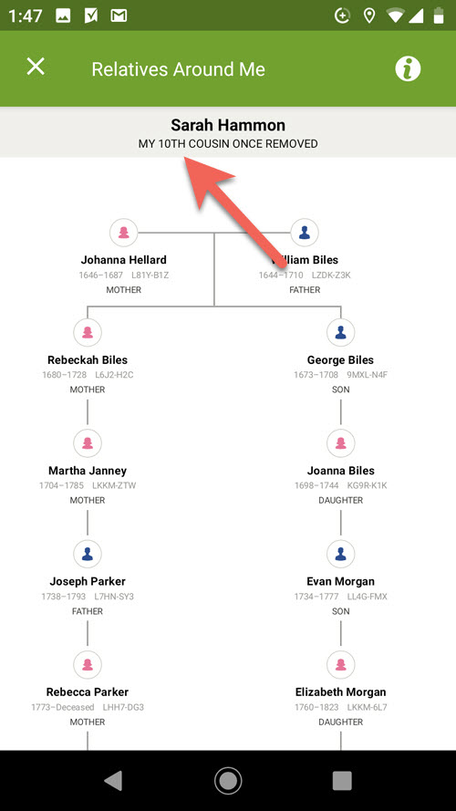 Screen showing how two people are related in Family Tree app.