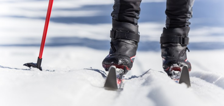 nordic skis in the snow with a red pole
