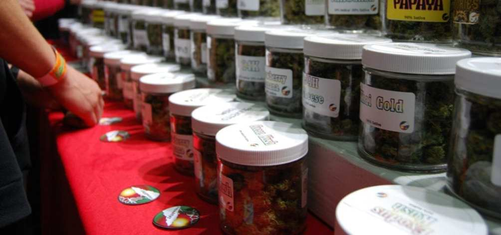 Product samples lined up on a table at the Emerald Cup 2016 in California.