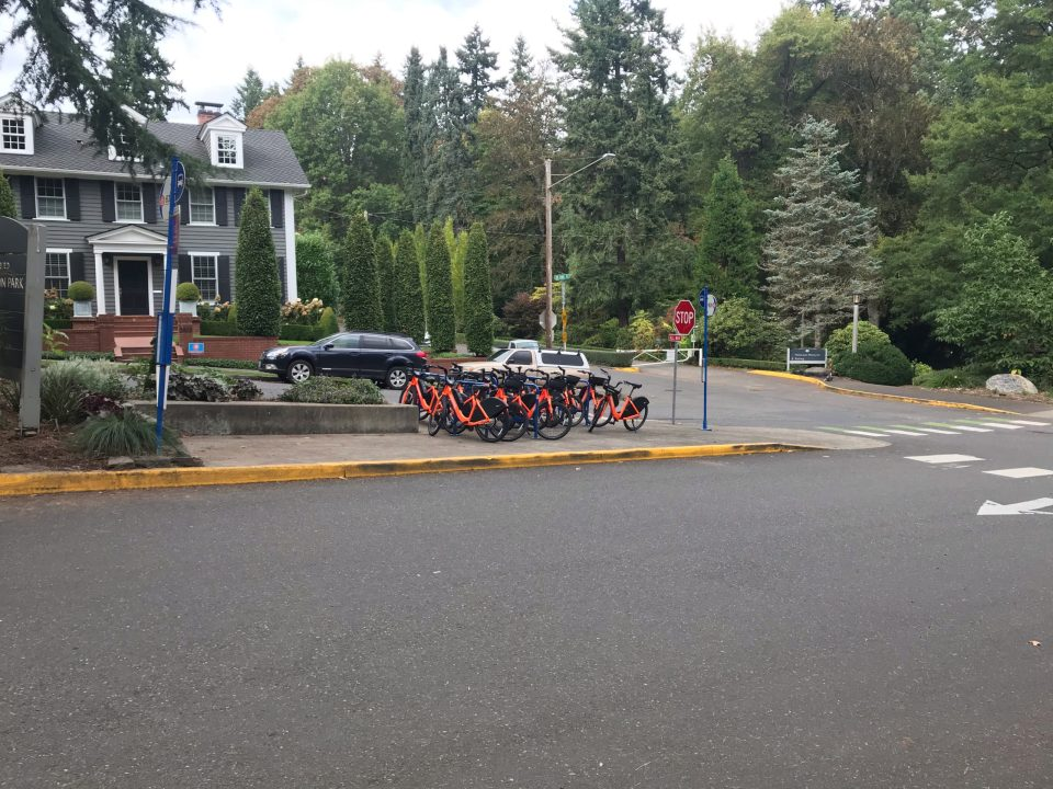 Photo of a massive number of BIKETOWN bikes at Washington Park.