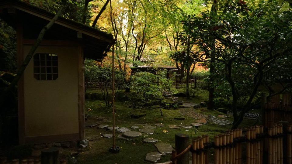 Photo of autumn foliage surrounding the tea house at Portland Japanese Garden.