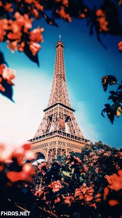 باريس خلفيات برج ايفل متحركه