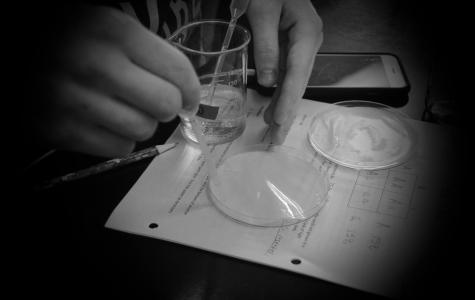 Classroom insider: Biology