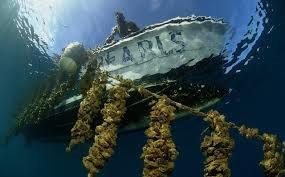 Pearls Fiji