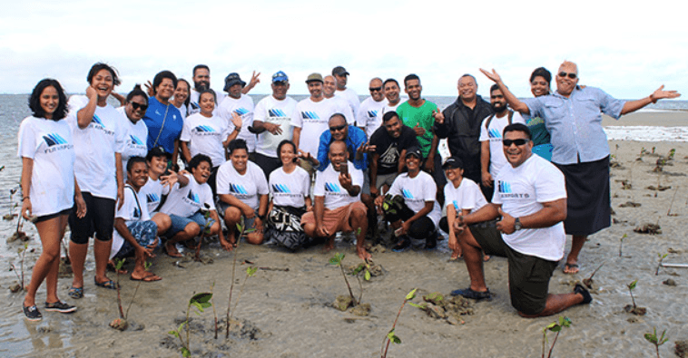 Fiji Airports Limited staff plant over 2,000 mangrove plants at Viseisei Village
