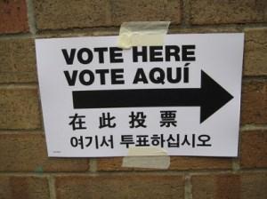 new york votes