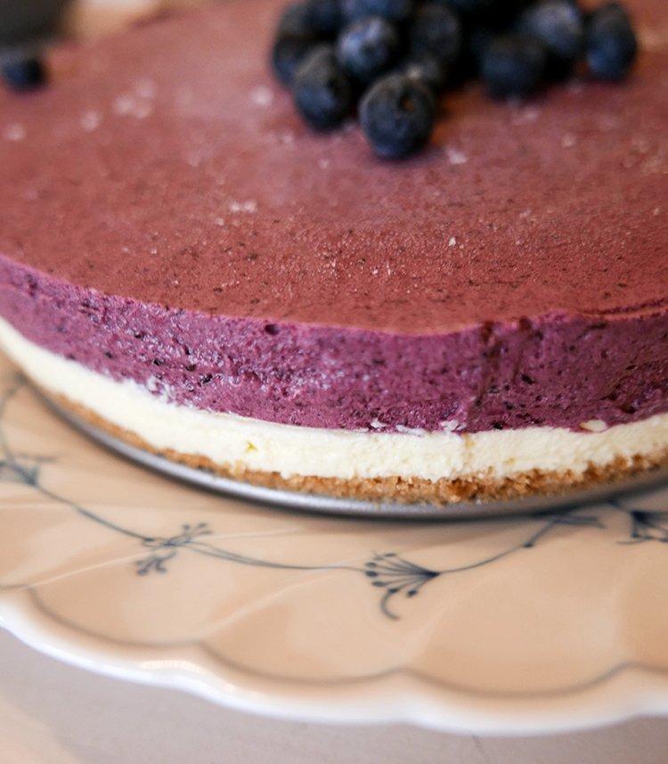 Cheesecake med blåbär närbild
