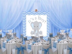 Blue Elephant Baby Shower Decorations Archives  Fiat Expressions
