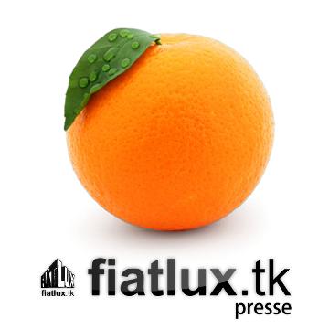 Fiat+⁄-Lux Presse