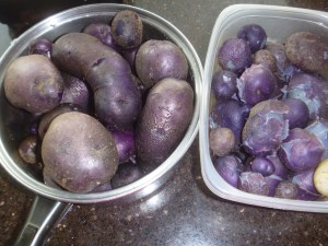 P1010897 blue potatoes