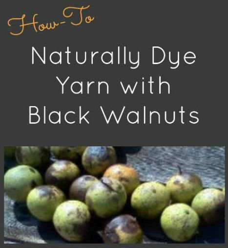 How to Dye Yarn Naturally with Black Walnuts, FiberArtsy.com