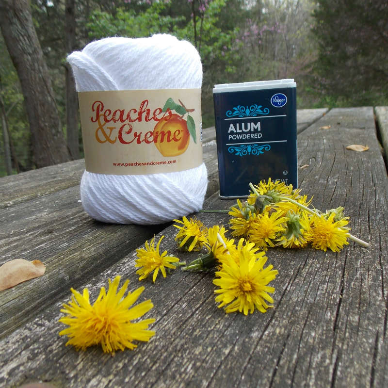 Natural Dyeing Supplies, yarn, alum mordant and dandelion flowers