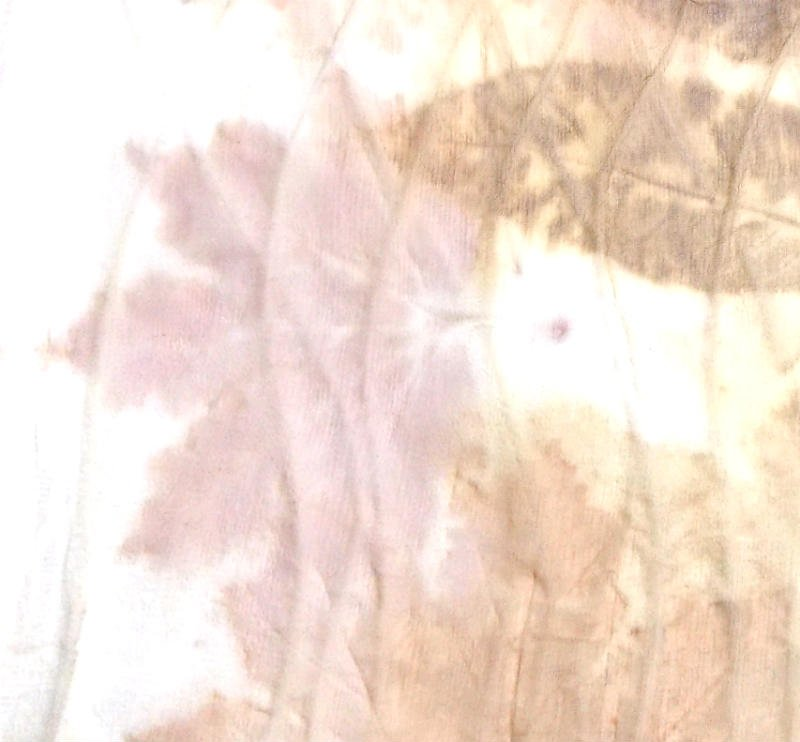 Eco Print Leaves on Silk Chiffon, a FiberArtsy.com Tutorial