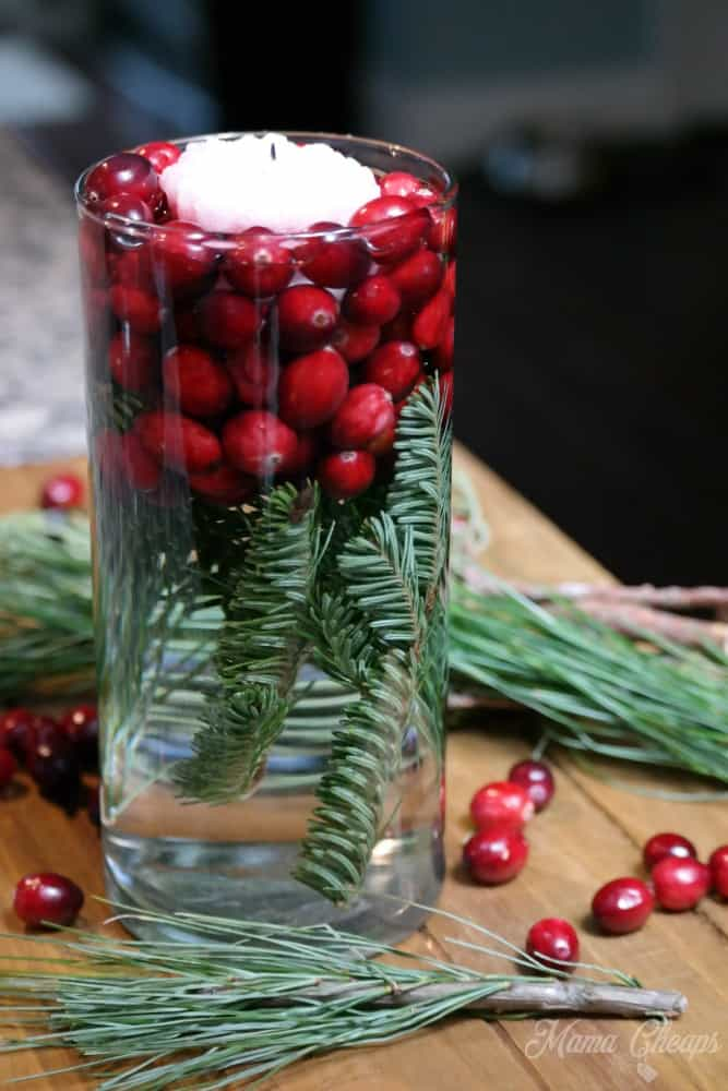Cranberry Holiday Candle Jar