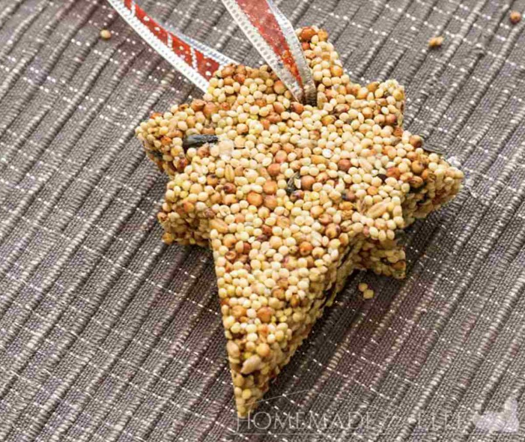 Ornament made with birdfood
