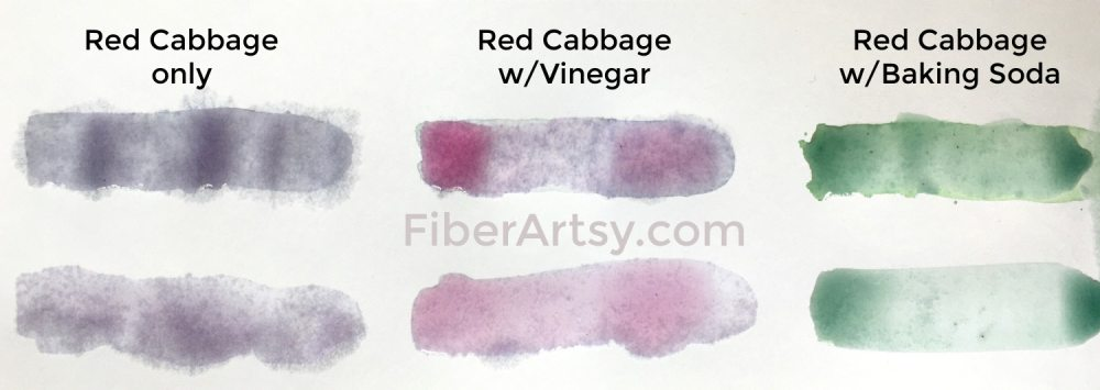 Vinegar and Baking Soda added to Red Cabbage natural dye stock