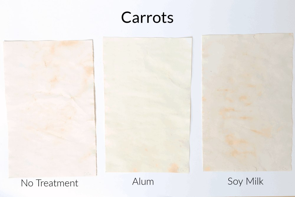 Carrot natural food dye
