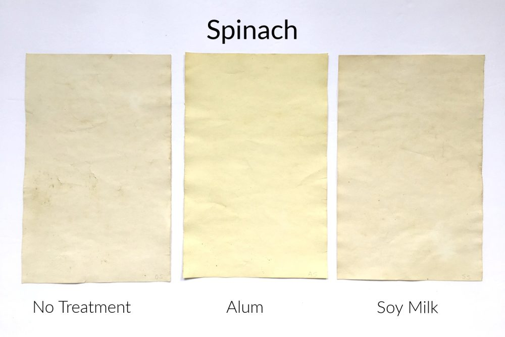 Papers stained with natural spinach