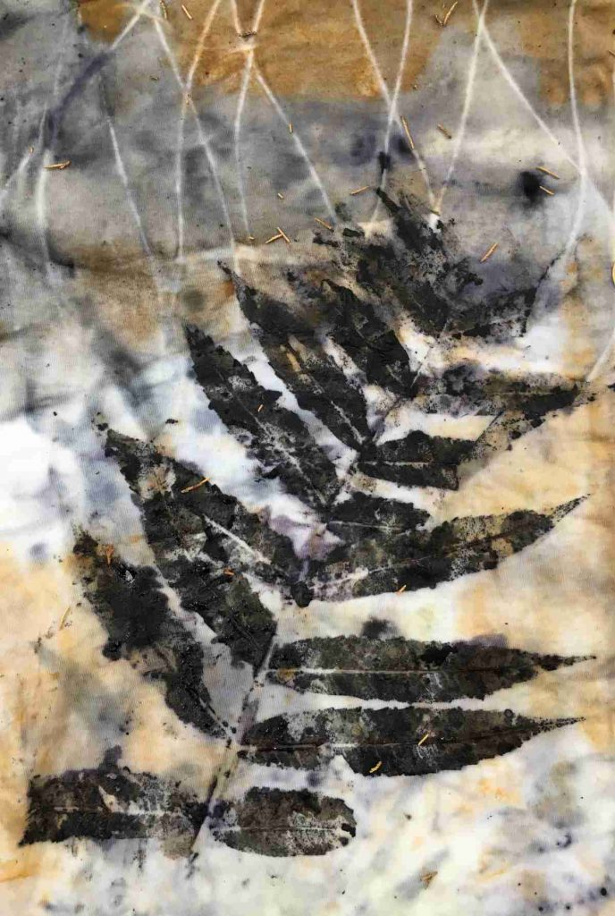 black walnut eco printed on fabric