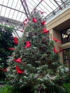 Cardinal Tree