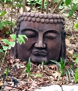Soon Buddha will be surrounded by plants, but right now you can see him really well