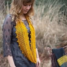 Desert Marigold by Ana Clerc