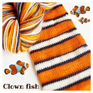 Clown Fish colorway. Photo Courtesy of Biscotte Yarns
