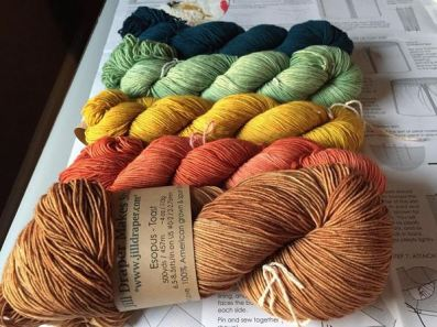 Danielle's yarn choices: Jill Draper Esopus in Sea Bottom, Celadon, Goldenrod, Redwood Deck and Toast