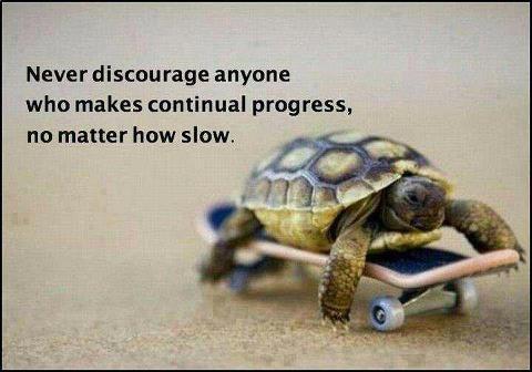 tortoise skateboard never discourage