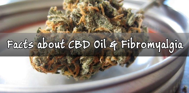 Facts about CBD oil and fibromyalgia
