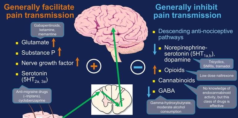 Norepinephrine in Fibromyalgia