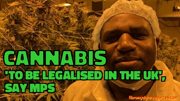 Cannabis 'to be legalised in the UK' , say MPs