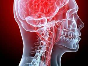 Read more about the article Hyperreactive brain network in fibromyalgia can cause chronic pain