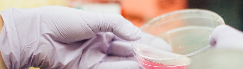 Kuvituskuvassa tutkija työssään laboratoriossa. Edistämme syöpätutkimusta ja ajantasaisimman tutkimustiedon hyödyntämistä sekä Läntisen Syöpäkeskuksen alueella että valtakunnallisesti.